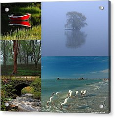 Award Winning Photography Pictures Acrylic Print by Juergen Roth