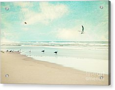 Away We Go Acrylic Print by Sylvia Cook