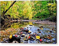 Awesome Autumn  Acrylic Print by Frozen in Time Fine Art Photography