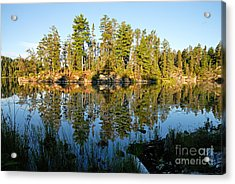 Awesub Morning Acrylic Print by Larry Ricker