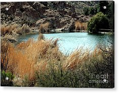 Ayer Lake Acrylic Print by Kathleen Struckle
