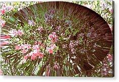 Azalea Bouquet Acrylic Print by Pamela Hyde Wilson