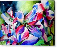 Azaleas Acrylic Print by Sacha Grossel