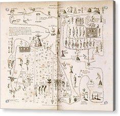 Aztec Migration Acrylic Print