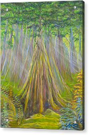 Acrylic Print featuring the painting B C Cedars by Cathy Long