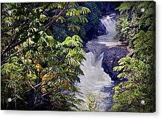 The Kwa Falls H Acrylic Print