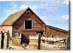 Acrylic Print featuring the photograph Baby Barn by Sylvia Thornton