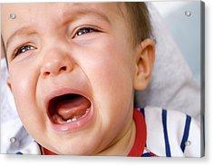 Baby Boy Crying Acrylic Print by Aj Photo