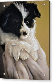 Acrylic Print featuring the pastel Baby Boy - Pastel by Ben Kotyuk