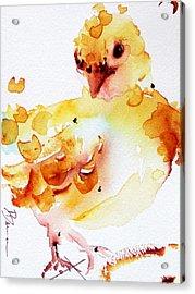 Baby Acrylic Print by Dawn Derman