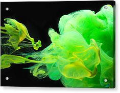 Baby Dragon - Abstract Photography Wall Art Acrylic Print