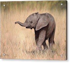 Elephant Calf Painting Acrylic Print
