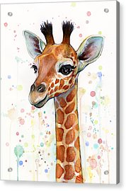 Baby Giraffe Watercolor  Acrylic Print