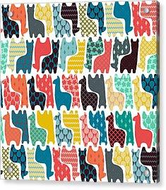 Baby Llamas Acrylic Print