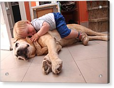 Baby On A Dog, Cares About Dog Acrylic Print by Aitor Diago