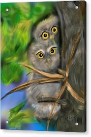 Baby Owls Acrylic Print by Christine Fournier