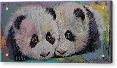 Baby Pandas Acrylic Print by Michael Creese