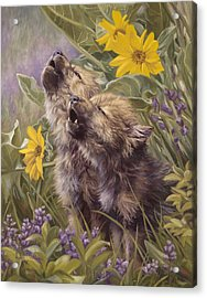 Baby Wolves Howling Acrylic Print by Lucie Bilodeau