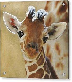 Baby Zara Acrylic Print