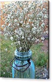 Baby's Breath Bouquet Acrylic Print by Sandra Estes