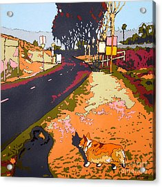 Back Bay Trail #567 Acrylic Print by Max Yamada