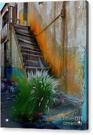 Back Entry Acrylic Print by CJ  Rider