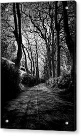 Back Road East 2 Acrylic Print
