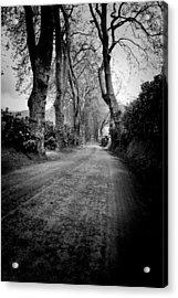 Back Road East Acrylic Print