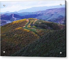 Back Road To Pendleton Acrylic Print by Louie Tarter