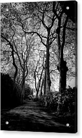 Back Road West Acrylic Print