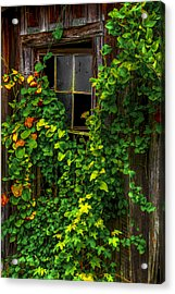 Back Window Acrylic Print by Russ Burch