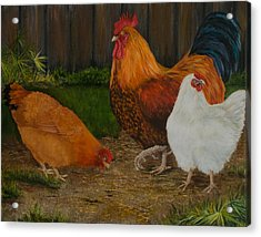 Back Yard Flock Acrylic Print