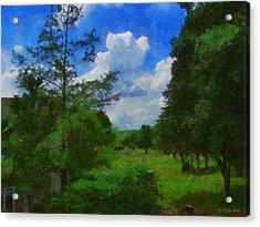 Back Yard View Acrylic Print by Jeffrey Kolker