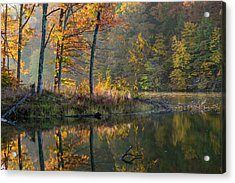 Backlit Trees On Lake Ogle In Autumn Acrylic Print by Chuck Haney