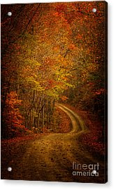 Backroad Color Acrylic Print