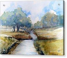 Backroads Of Georgia Acrylic Print by Sally Simon