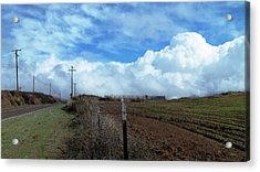 Backroads- Telephone Poles- And Barbed Wire Fences Acrylic Print by Glenn McCarthy Art and Photography