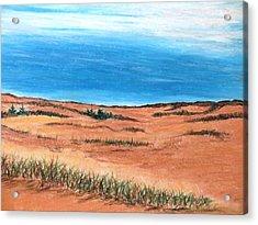 Backside Beach Acrylic Print