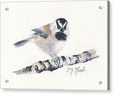 Backyard Busybody - Mountain Chickadee Acrylic Print