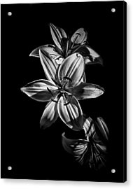 Backyard Flowers In Black And White 9 Acrylic Print