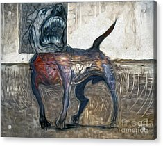 Bad Dog Acrylic Print by Gregory Dyer