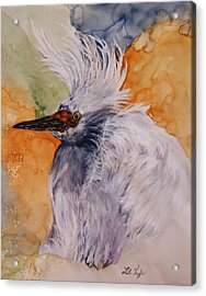 Bad Hair Day Acrylic Print by Lil Taylor