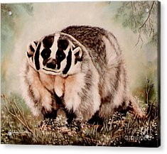 Acrylic Print featuring the painting Badger In The Mist by DiDi Higginbotham