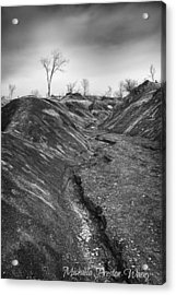 Acrylic Print featuring the photograph Badlands 3 by Michaela Preston