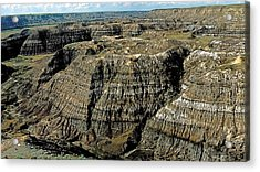 Badlands Acrylic Print by Terry Reynoldson