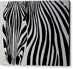 Badzebra Acrylic Print