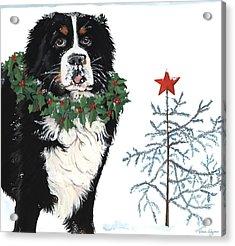 Bah Humb Merry Christmas Acrylic Print by Liane Weyers
