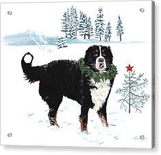 Bah Humbug Merry Christmas Large Acrylic Print by Liane Weyers