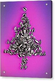 Bah Humbug Acrylic Print by Norman Hollands
