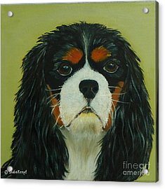 Acrylic Print featuring the painting Cavalier King Charles Spaniel by Shelia Kempf